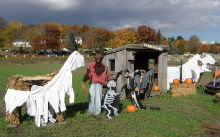 幽霊馬(?)と狼男と骸骨