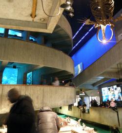 水族館内部